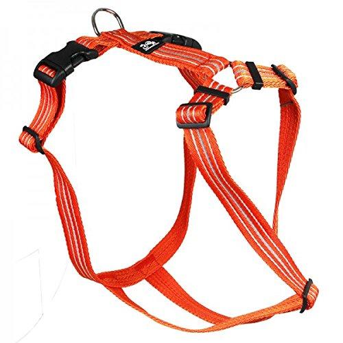 Feltmann Hundegeschirr - Soft-Nylonband Reflektierend orange, Bauchumfang 70-90 cm, 25 mm Bandbreite (Soft-uhr)