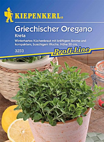 Sperli Gemüsesamen Oregano Kreta, grün