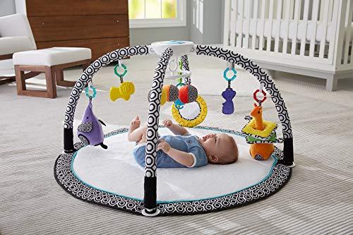 Fisher-Price Tapis musical et lumineux d'éveil et d'activités Jonathan Adler pour bébé, 9 jouets amovibles, vibrations apaisantes, dès la naissance, DFP71