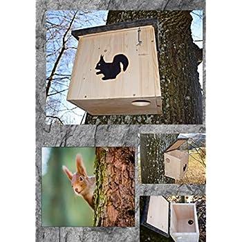Eichhörnchenkobel  Nistkasten Eichhörnchenhaus XL mit 2 Eingängen