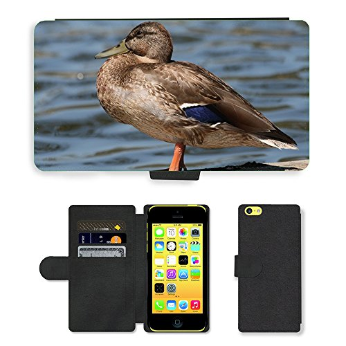 Just Mobile pour Hot Style Téléphone portable étui portefeuille en cuir PU avec fente pour carte//m00138665Mallards femelle Oiseaux Plumes Marron//Apple iPhone 5C