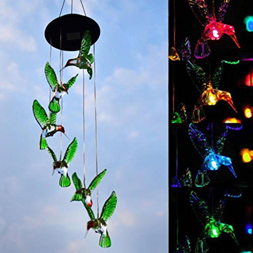 ele LED, Farbwechsel Kolibri Lampe Automatische Sensor Garten Spinner Außenleuchten Für Home Party Dekorationen Kolibri, Ball, Seestern, Schmetterling, Libelle, Stern Monat ()