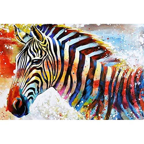 HYDWX Malen nach Zahlen für Senior Junior Anfänger Ebene, Malen nach Zahlen Set Zebra mit Pinsel Farben und Leinwand Home Decor 50x60CM