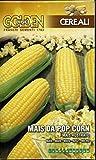 FRANCHI SEMENTI SEMENTE di Mais da Pop Corn in Confezione da 100 Grammi
