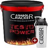 Testo Power, Whey Proteine Creatin Shake, 2600g Dose, Cappuccino Geschmack Eiweißpulver + Shaker