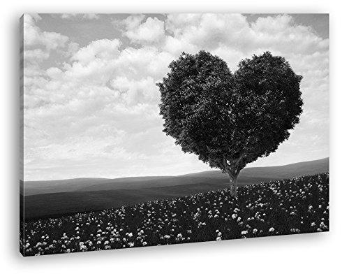 Romantischer Baum in Herzform Format: 100x70 Effekt: Schwarz/Weiß als Leinwandbild, Motiv fertig...