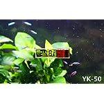 RICISUNG 1pcs Digital LCD Fish Aquarium Marine Vivarium Thermometer -50¡ãC to 70 ¡ãC 6