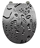 Carpemodo WC Sitz WC Deckel Klodeckel Antibakteriell Scharniere verchromt Größe 43x36 cm Wasser Foto/Grau