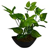 #9: Fancy Mart Artificial Green Leaves Plant With Boat Shape Pvc Black Pot