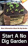 Start a No Dig Garden: More Information About No Dig Garden