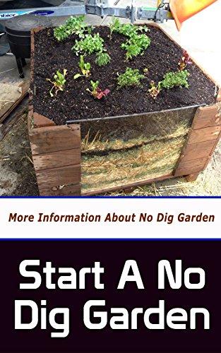 Start a No Dig Garden: More Information About No Dig Garden