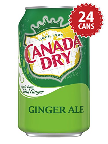 canada-dry-ginger-ale-us-import-24-dosen-x-355ml