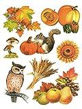 dpr. Fensterbild Set 8-tlg. Herbst Früchte Kürbis Eule Ähren Blätter Laub Eichhörnchen statisch haftend Fenstersticker Fensterdeko Herbstdeko