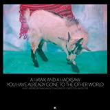 A Hawk and a Hacksaw: You Have Already Gone to the Other World (Audio CD)