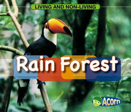 In a Rain Forest (Living and Nonliving)