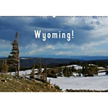 Wyoming! / BE-Version (Calendrier mural 2014 DIN A2 horizontal): Un voyage à travers la nature sauvage du Wyoming. (Calendrier mensuel, 14 Pages)