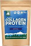 Kleen Sports Nutrition Premium Collagen Protein - Pure, 200 G