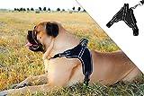 Molosser Hundegeschirr für kleine mittelgroße große Hunde und Welpen, reflektierend Brustgeschirr Sicherheitsgeschirr Hund ausbruchsicher gefüttert, Gr. XL