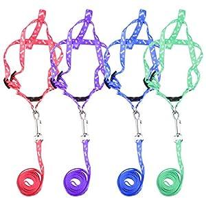 Welpen Blei Haustier kleiner Hund Nylon Drucken Halsband Gurt Leine Set Neck Einstellbare Farbe zuf?llig