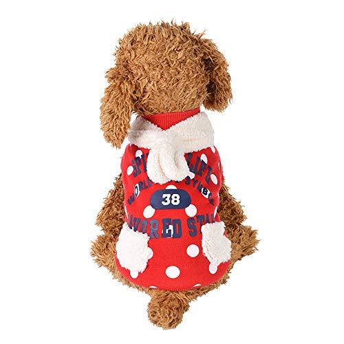 BulzEU - – Hunde Welpen Kleidung Small/Medium Haustier – Casual Dog Sweater Kleidung Kleidung – Buchstaben Print Spitzes Muster Fell Schal Dekoration Welpen Outwear für Teddy, Chihuahua