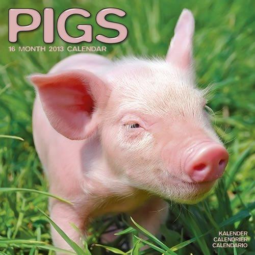 Pigs W 2013