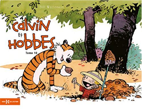 Calvin & Hobbes original T10 (10)