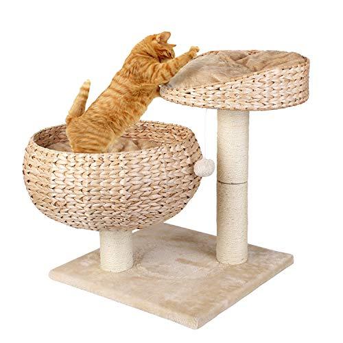 Pedy Katzenbett Stabiler Kratzbaum mit Kratzbett Robuster Kletterbaum für Katzen Katzenkratzbaum...