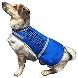 """Hunde-Signalweste mit englischsprachiger Aufschrift """"Caution I'm Blind"""" (Deutsch: Achtung, ich bin blind), gute Sichtbarkeit, orange"""