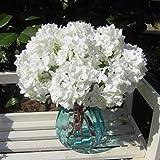 Bluelover-Fleur-artificielle-hortensia-bouquet-de-marie-en-soie-parti-dcoration-5Colors-mariage-blanc
