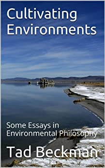 environmental philosophies essay Paper assignment, environmental ethics, fall 2007 the paper should be 5-7 pages (double space, typewritten) and explore the ethical and/or philosophical dimensions.