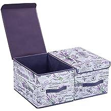 homyfort Set de 2 Cajas de Almacenaje Cubos de Tela Organizador Plegable con Tapa 30 x