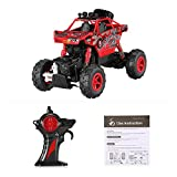 Goolsky RC Voiture CREATIVE DOUBLE STAR 1150 1/20 2.4G 4WD RTR King Turned Climb Off-road Rock Crawler