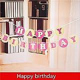 Theme My Party Happy Birthday Banner (Pi...