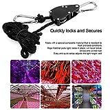 Lorenlli 1 Para 1/4 330 £ Kleiderbügel Seil Ratsche 150Kg Last für Aquarium LED-Anlage Wachsen Zelt Raumventilator Kohlenstofffilter Wachsen Licht