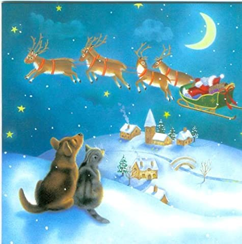 Sternenklare Nacht, Katze und Hund beobachten Santas Schlitten / Louise Masters (Katze Weihnachtskarten)