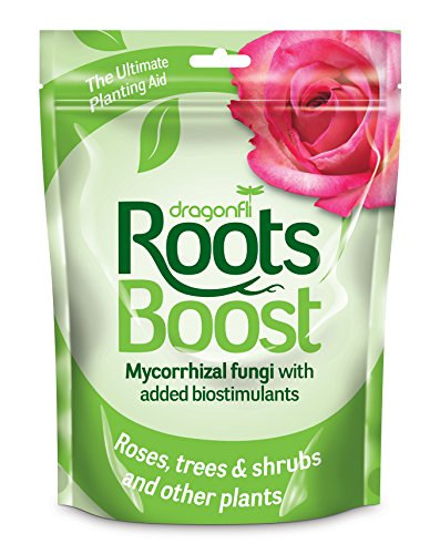 dragonfli-ps-01-60g-roots-boost-brown-pack-of-1