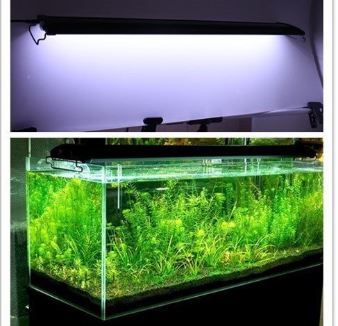 aquarium led beleuchtung im vergleich top 3led lampe. Black Bedroom Furniture Sets. Home Design Ideas