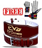 EVO Fitness 4' Ledertasche Fitnessstudio Riemen Gewichtheben Riemen Rücken-unterstützung...