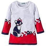 Yinew Kinder Rock Pullover Herbst und Winter Fuchs Drucken Langarm Kinder  Kleid Spitzenspitze Kinder Kleid Mädchen Pullover Rot 110cm fb0cc49557