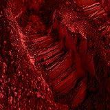 Oxyde de Fer Rouge 80i: Pigment pour béton et chaux - 1 Kg