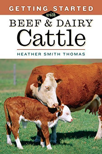 Getting Started with Beef & Dairy Cattle by Thomas, Heather Smith (2005) Paperback