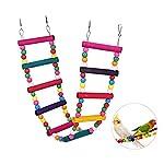 Bello Luna Rainbow Parrot Ladder Flexible Wooden Swing Toys for Bird 7