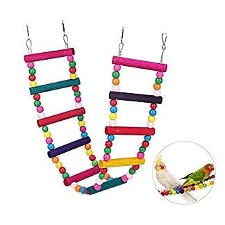 Bello Luna Rainbow Parrot Ladder Flexible Wooden Swing Toys for Bird 4