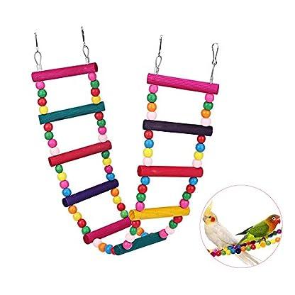 Bello Luna Rainbow Parrot Ladder Flexible Wooden Swing Toys for Bird 1