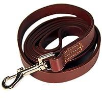Logical Leather Laisse Pour Chien - La Meilleure Pour Le Dressage - Imperméable Et Résistante