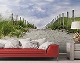 Premium XXL Vliestapete Auf dem Weg zum Strand durch Dünen – Größe: 400 x 267 cm - 2