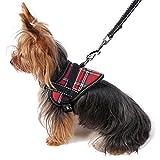 DealMux Reflective Welpen-Hundegeschirr Leine Verstellbare Kleiner Hund Sicherheitsweste Set