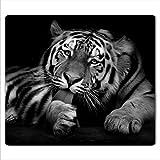 decorwelt | Herdabdeckplatte 60x52 cm Ceranfeldabdeckung 1-Teilig Universal Elektroherd Induktion für Kochplatten Herdschutz Deko Schneidebrett Sicherheitsglas Spritzschutz Glas Tiger