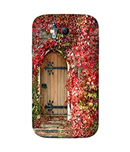 Wooden Door Samsung Galaxy Grand 3 Printed Back Cover