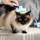 Bluepet *ZupfZeug* Fellbürste mit Click Clean Selbstreinigend |Sanfte Katzenbürste Zupfbürste | Kurzhaar bis Langhaar - 6